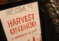 Harvest Ontario – iYellow Wine Club
