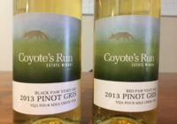 Coyote's Run – Spring Visit