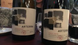 Arterra – New Wines from Marco Piccoli