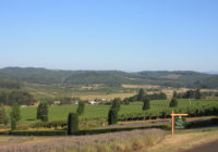 King Estate Winery – Oregon