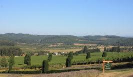 King Estate Winery – Oregon