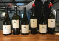 Icellars – The New Winery On The Block